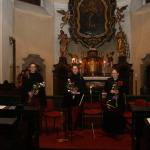 Societas Musicalis - adventní koncert 2014